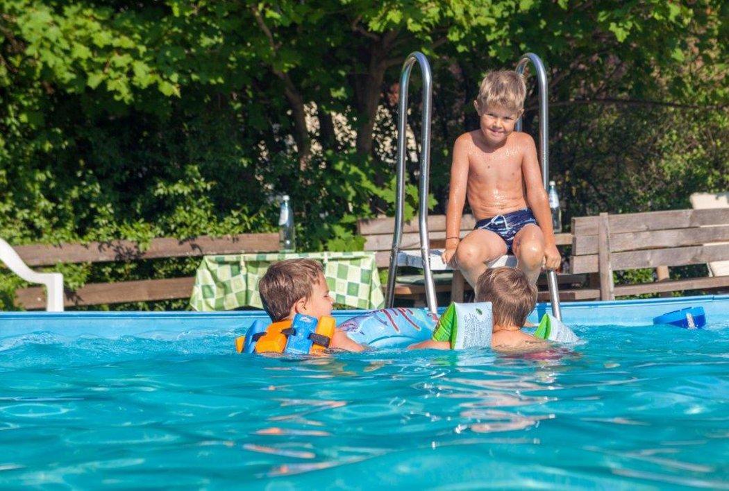 Outdoor-Pool mit Liegewiese im Hotel Alber, Vöran